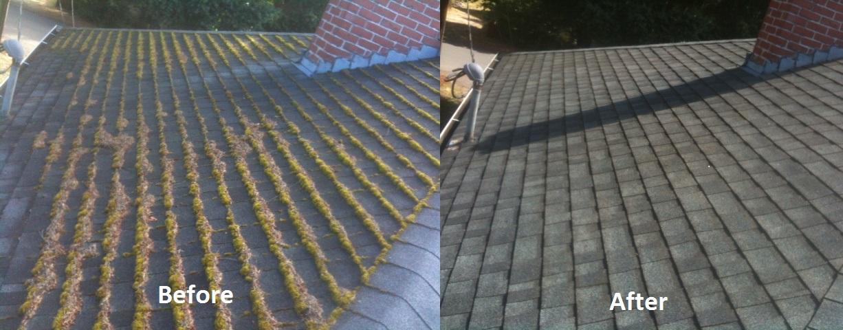 Cedar Roofs NW